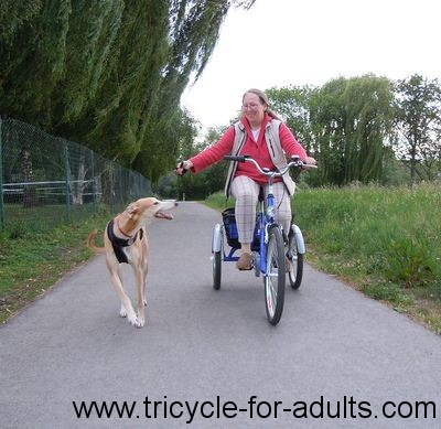 Three cycling with dog