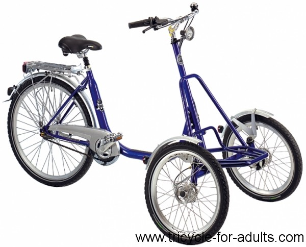 Electric tricycle front Panthers Triamo Sparc blue
